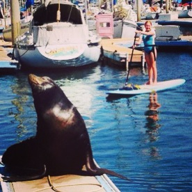Katie SUPs with Sea Lion