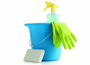 dadvmom.com_sickofsickkids_cleaningsupplies