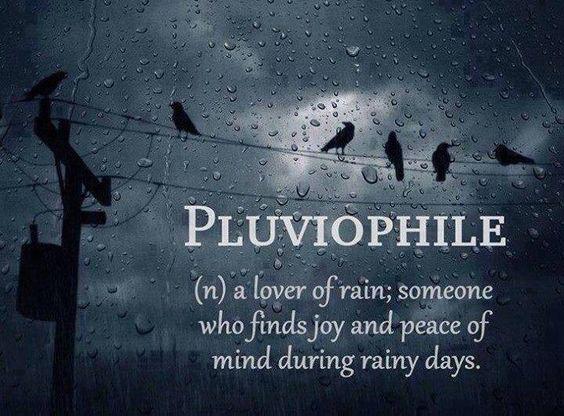 dadvmom.com_rain_rainlover